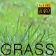 The Green Grass 3 - VideoHive Item for Sale