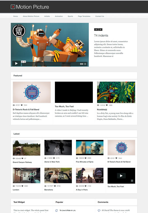 Motion Picture - Responsive WordPress Video Theme