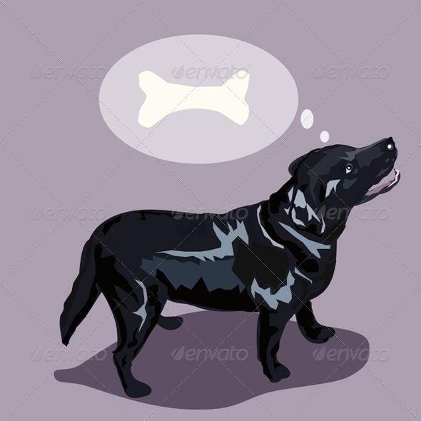 GraphicRiver Dreaming Labrador Dog 7507257