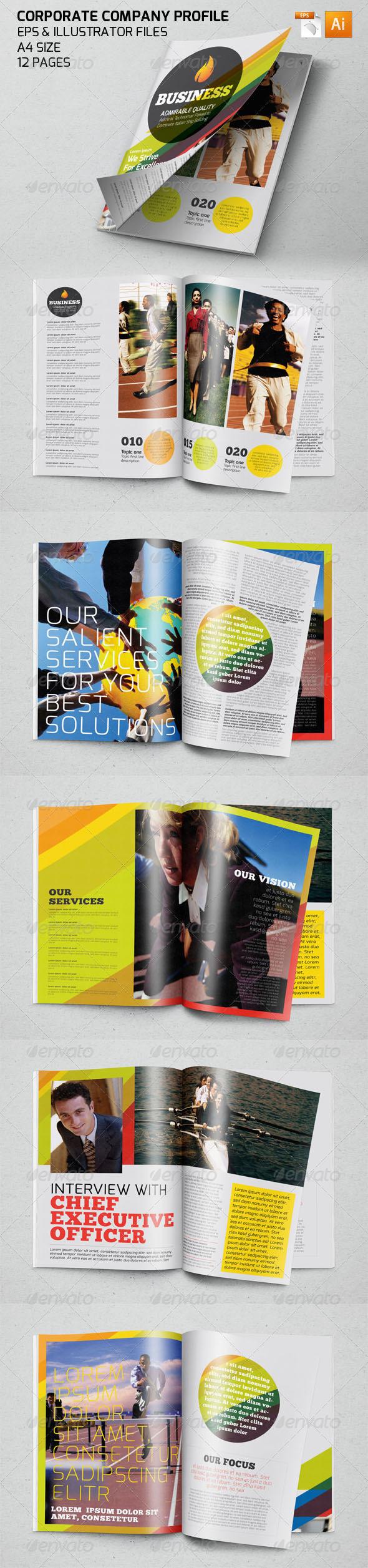 GraphicRiver Propfessional Corporate Company Profile Template 7509720