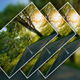 Image Focus Actions - GraphicRiver Item for Sale