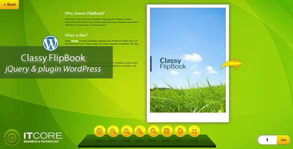 FlipBook Bundle pluginWordPress - 4
