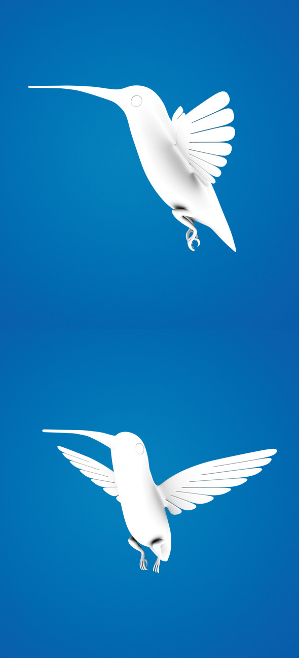 Humming Bird - 3DOcean Item for Sale