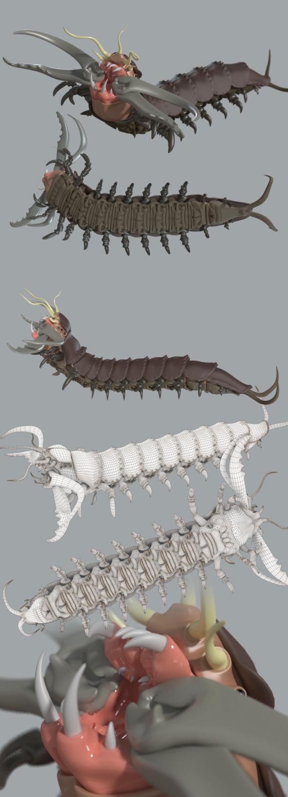 3DOcean Bobbit worm 7523328