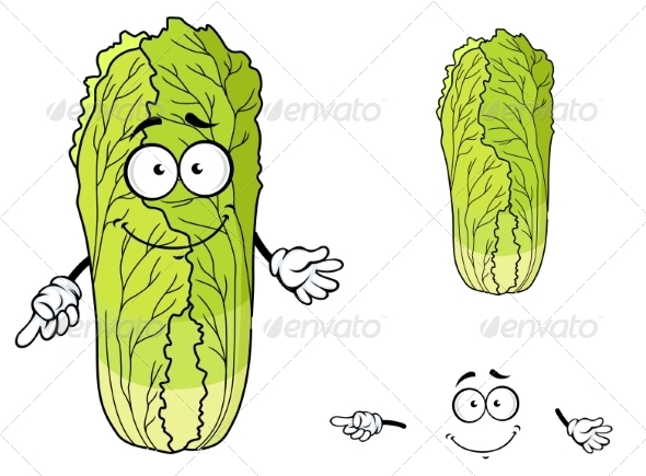 GraphicRiver Healthy Leafy Cartoon Chinese Cabbage Vegetable 7546810