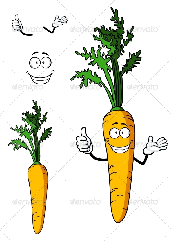 GraphicRiver Fresh Whole Carrot Vegetable 7546919