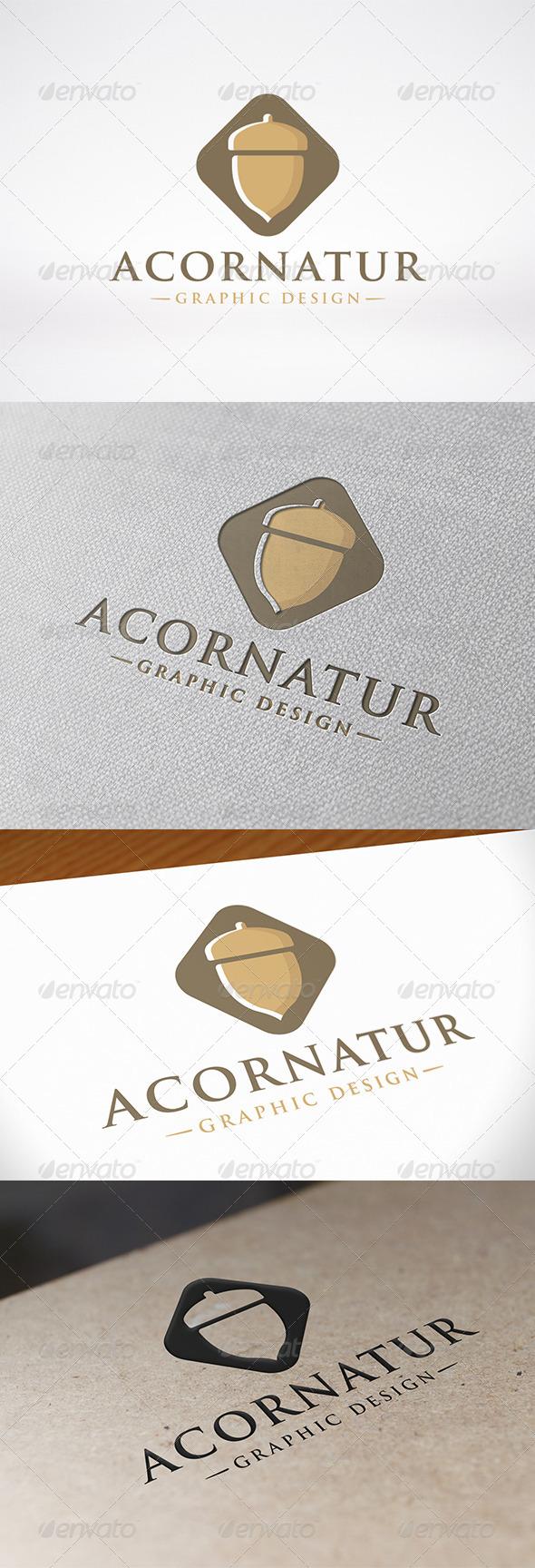 GraphicRiver Acorn Logo 7548403