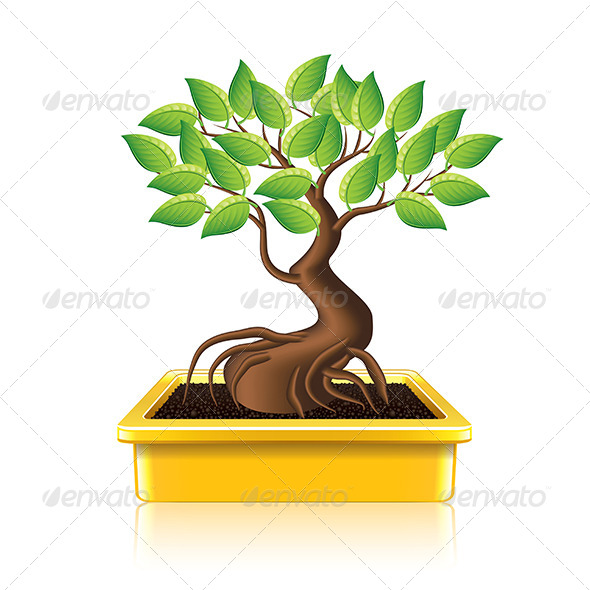 GraphicRiver Bonsai Tree 7550540