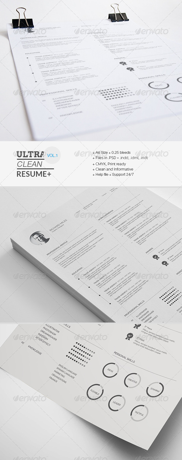 GraphicRiver Clean Resume 7549646