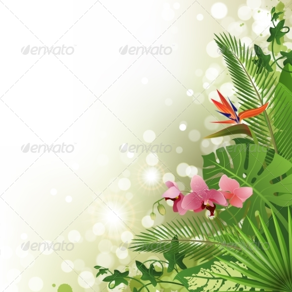 GraphicRiver Tropical Background 7565044