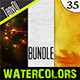 Various Watercolors | Bundle