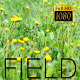 The Flower Field 9 - VideoHive Item for Sale