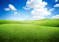 Green Rolling Fields - PhotoDune Item for Sale
