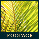Green Leafs 15 - VideoHive Item for Sale