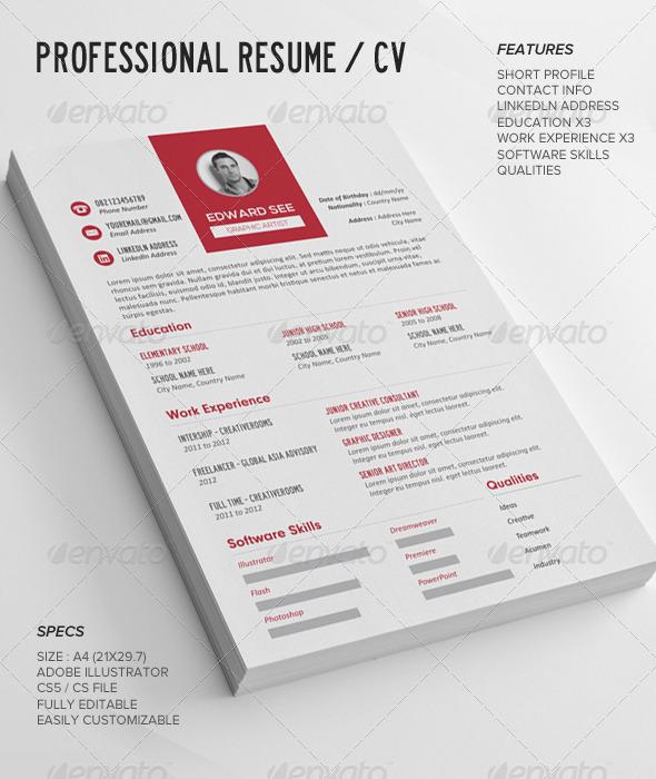 GraphicRiver Professional Resume CV 7582645
