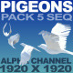 Pigeons Animation - VideoHive Item for Sale