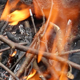 Charcoal Fire - VideoHive Item for Sale