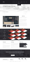 09-intelly-portfolio-details.__thumbnail