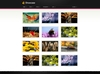 06_portfolio_thumbnails.__thumbnail