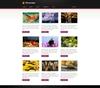 07_portfolio_informations.__thumbnail