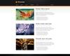 08_portfolio_descriptive.__thumbnail