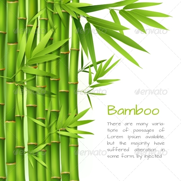 GraphicRiver Realistic Bamboo Background 7606597