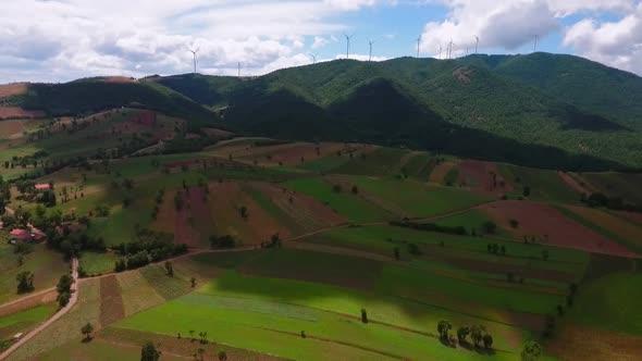 VideoHive Wind Turbine Field 18978382