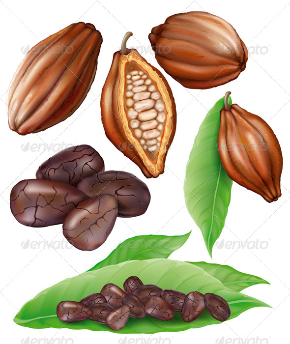 GraphicRiver Cacao Pods and Grains 7615241