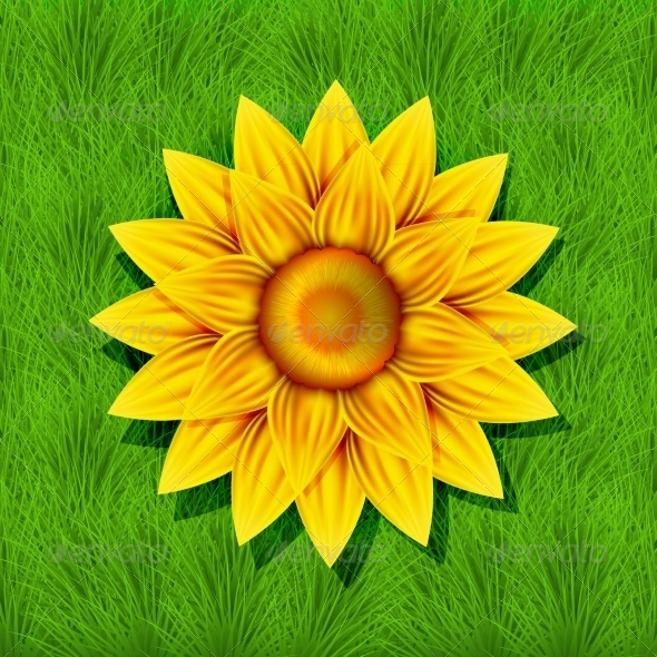GraphicRiver Creative Yellow Flower on Grass Background 7626942