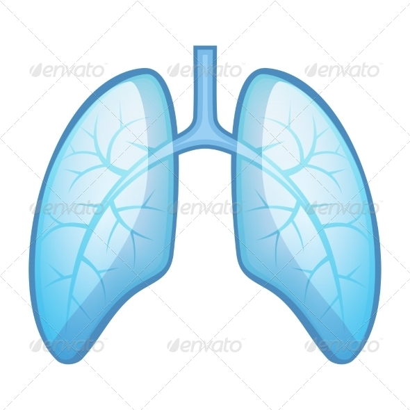 GraphicRiver Human Health Lungs and Bronchi 7634920