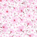 Seamless pattern of pink spring Sakura blossom - PhotoDune Item for Sale