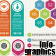 The Info Graphic   - GraphicRiver Item for Sale