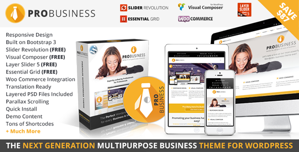 PRO Business - Responsive Multi-Purpose Theme - Business Corporate