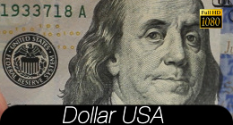 Dollar USA Collection
