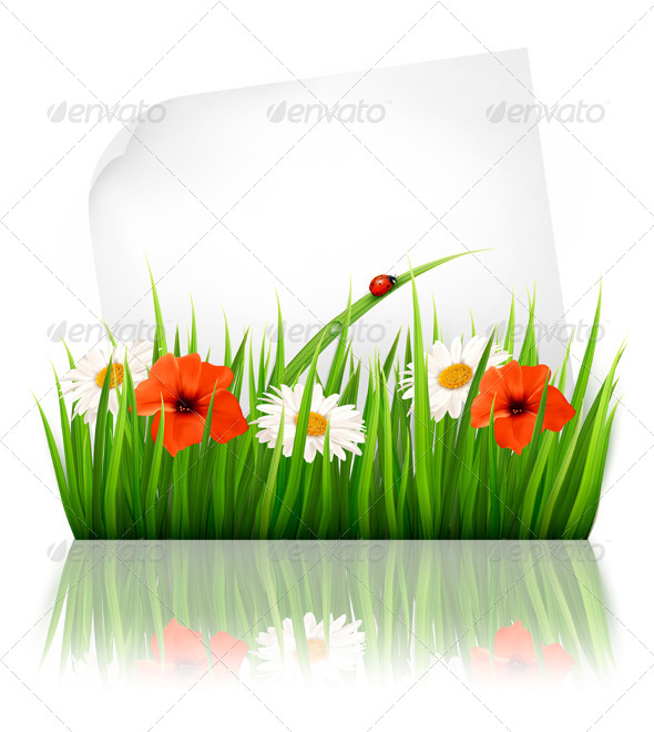 GraphicRiver Nature Background with Grass and a Sheet of Paper 7647900