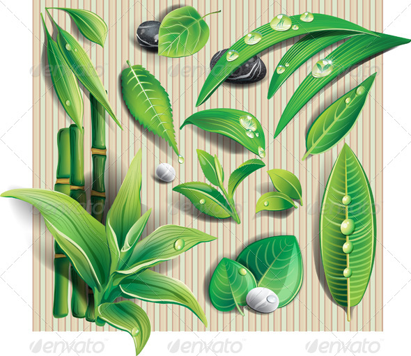 GraphicRiver Set of Leaves 7651968