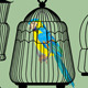 Set of Decorative Bird Cage Silhouettes and Birds  - GraphicRiver Item for Sale