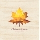Autumn Leaf - GraphicRiver Item for Sale