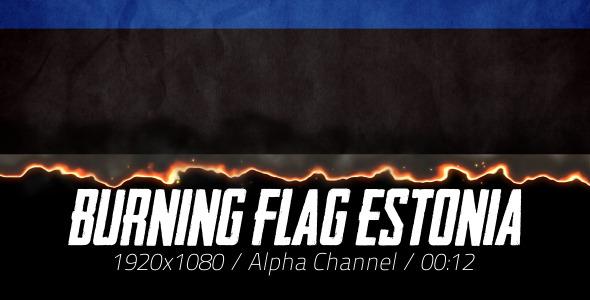 Burning Flag Estonia