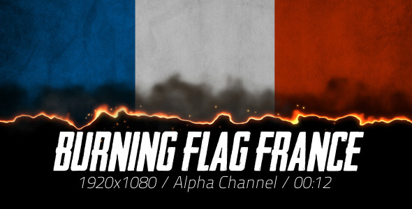 Burning Flag France