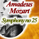 Mozart Symphony No.25  - AudioJungle Item for Sale