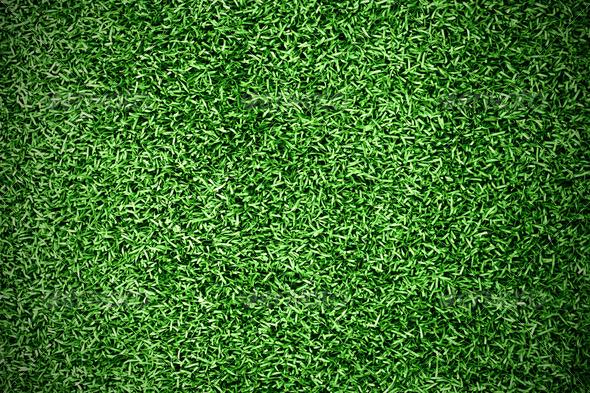 PhotoDune turf grass background 788870