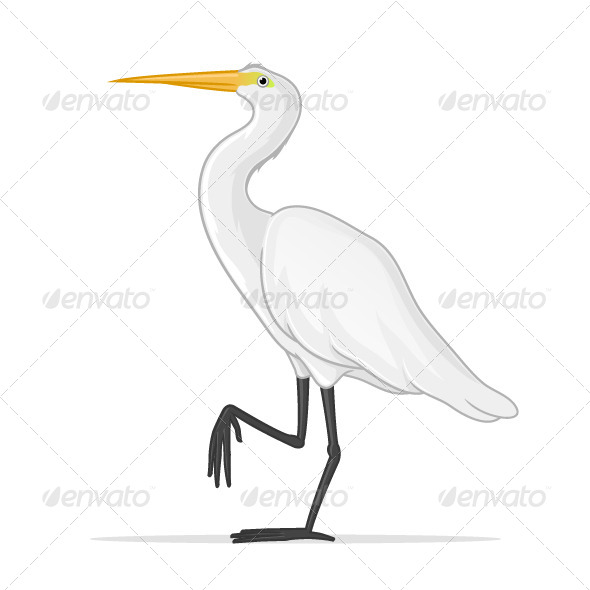 GraphicRiver Egret 7674670