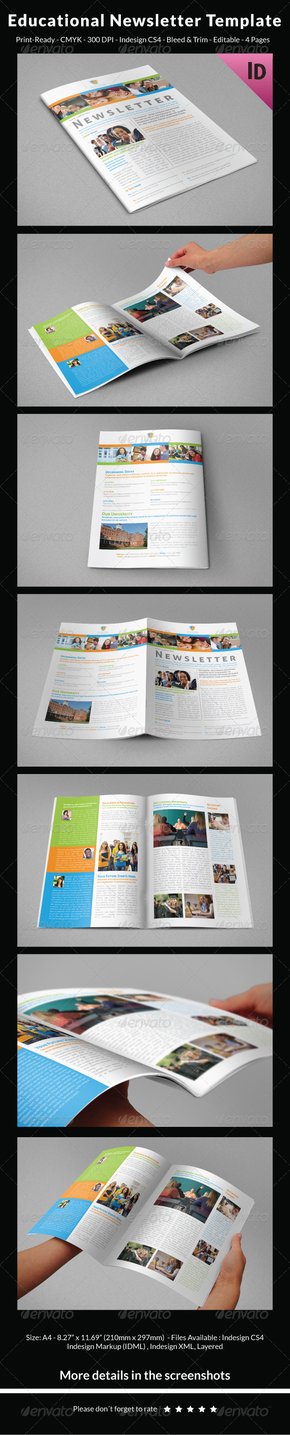 GraphicRiver Educational Newsletter Template 7675648