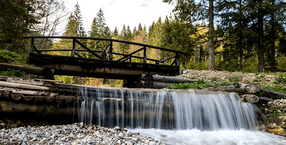 Small Wooden Bridge Over Stream Deep in the Forest