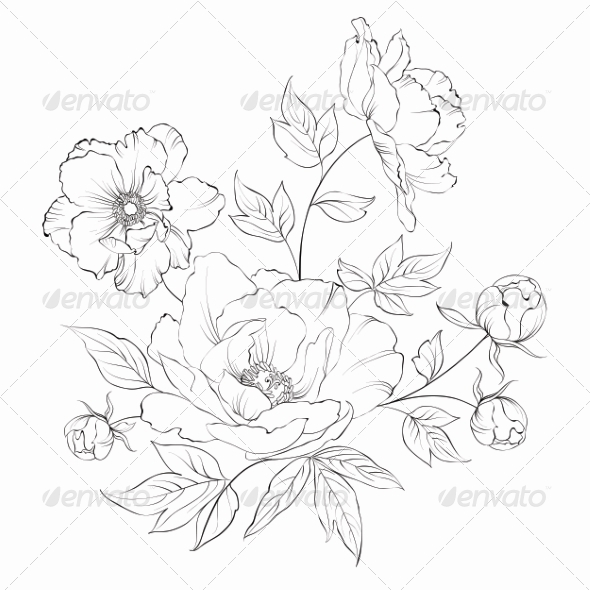 GraphicRiver Bush of Beautiful Peonies 7682367