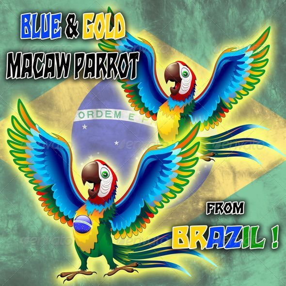 GraphicRiver Macaw Cartoon with Brazil Flag Colors 7683475