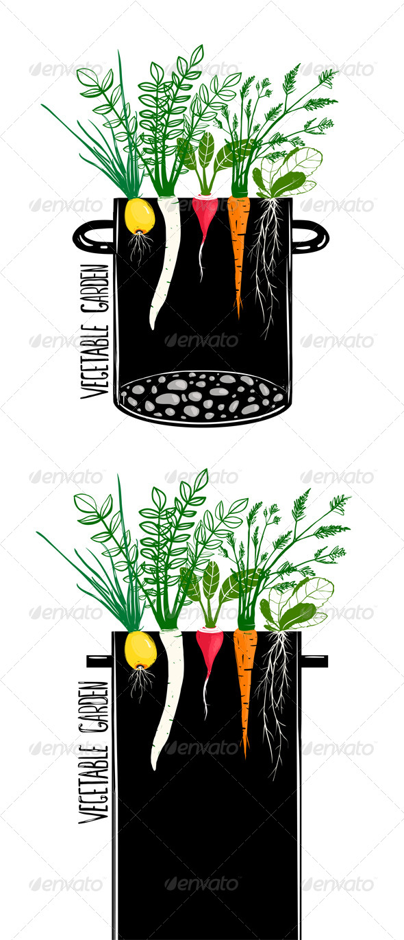 GraphicRiver Grow Vegetable Garden and Cook Soup 7683953