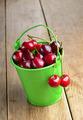 Organic Cherries in the green bucket - PhotoDune Item for Sale