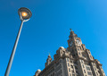 Liver Building - PhotoDune Item for Sale